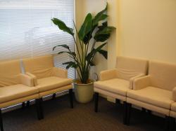ようこう歯科医院 待合室
