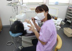 水戸 日曜 みずき歯科医院 歯科プラス