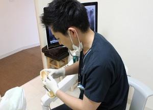千葉歯科クリニック