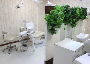 クローバー歯科 2