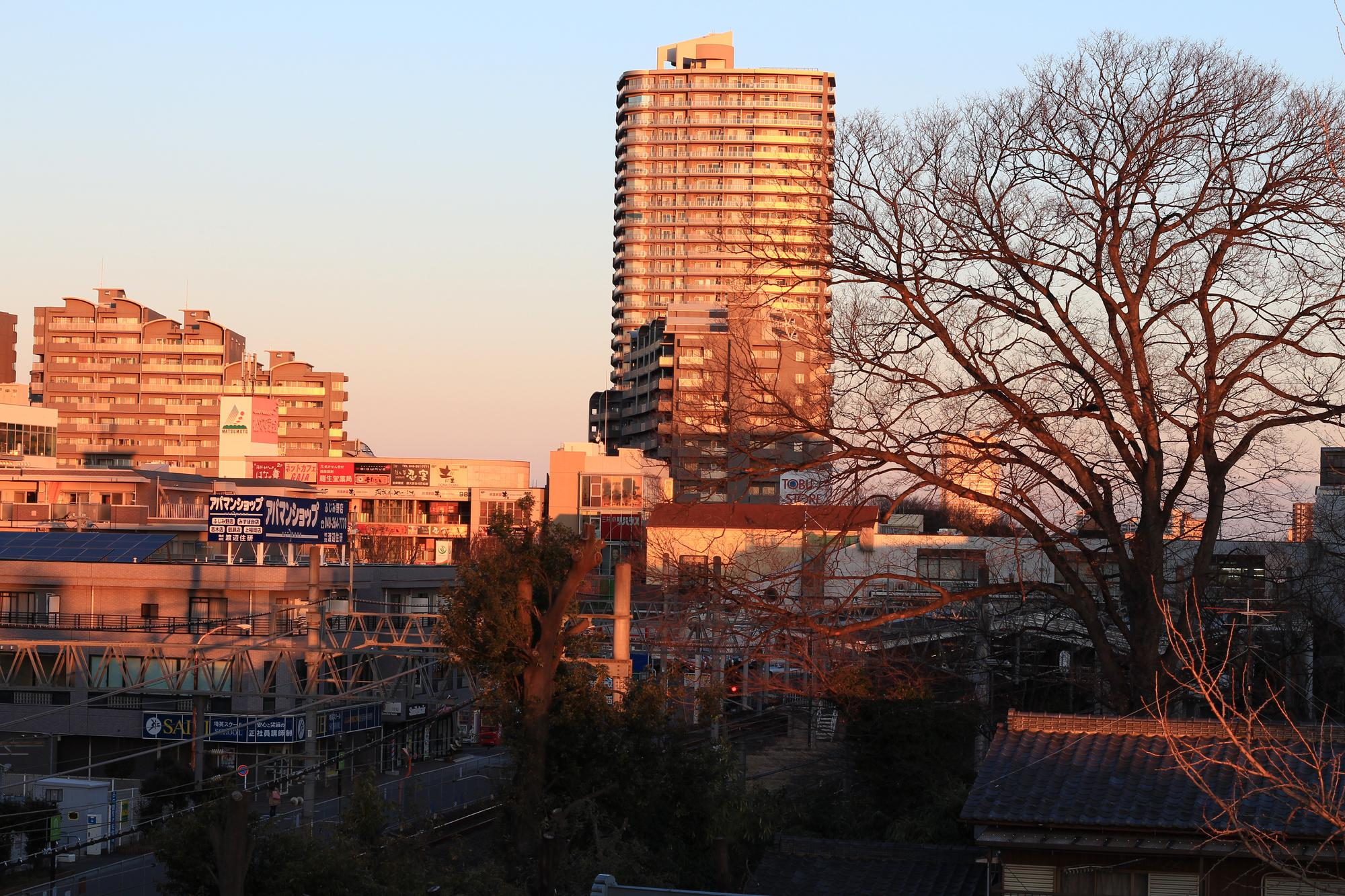 富士見市 夜間診療