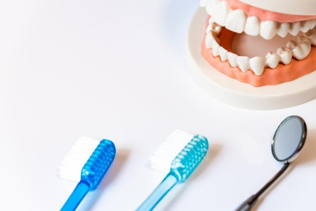 土曜に通院したい方へ!中延駅の歯医者さん、おすすめポイント紹介