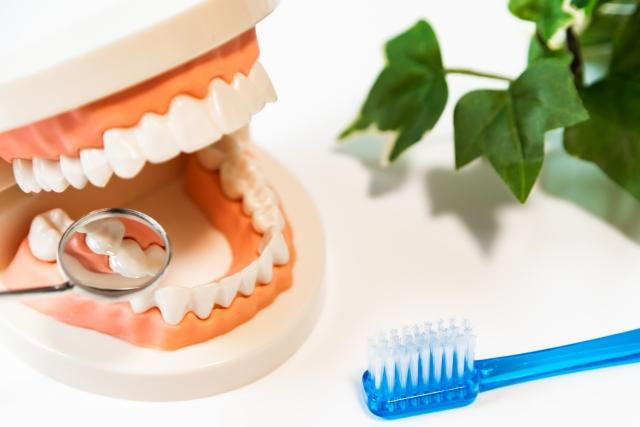 〈予約可〉神奈川県の歯医者18院!おすすめポイントも紹介
